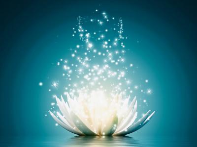 Dreamstime -Leinwandbild v georgiev magie der lotus blume 80 60 cm blau 12677411