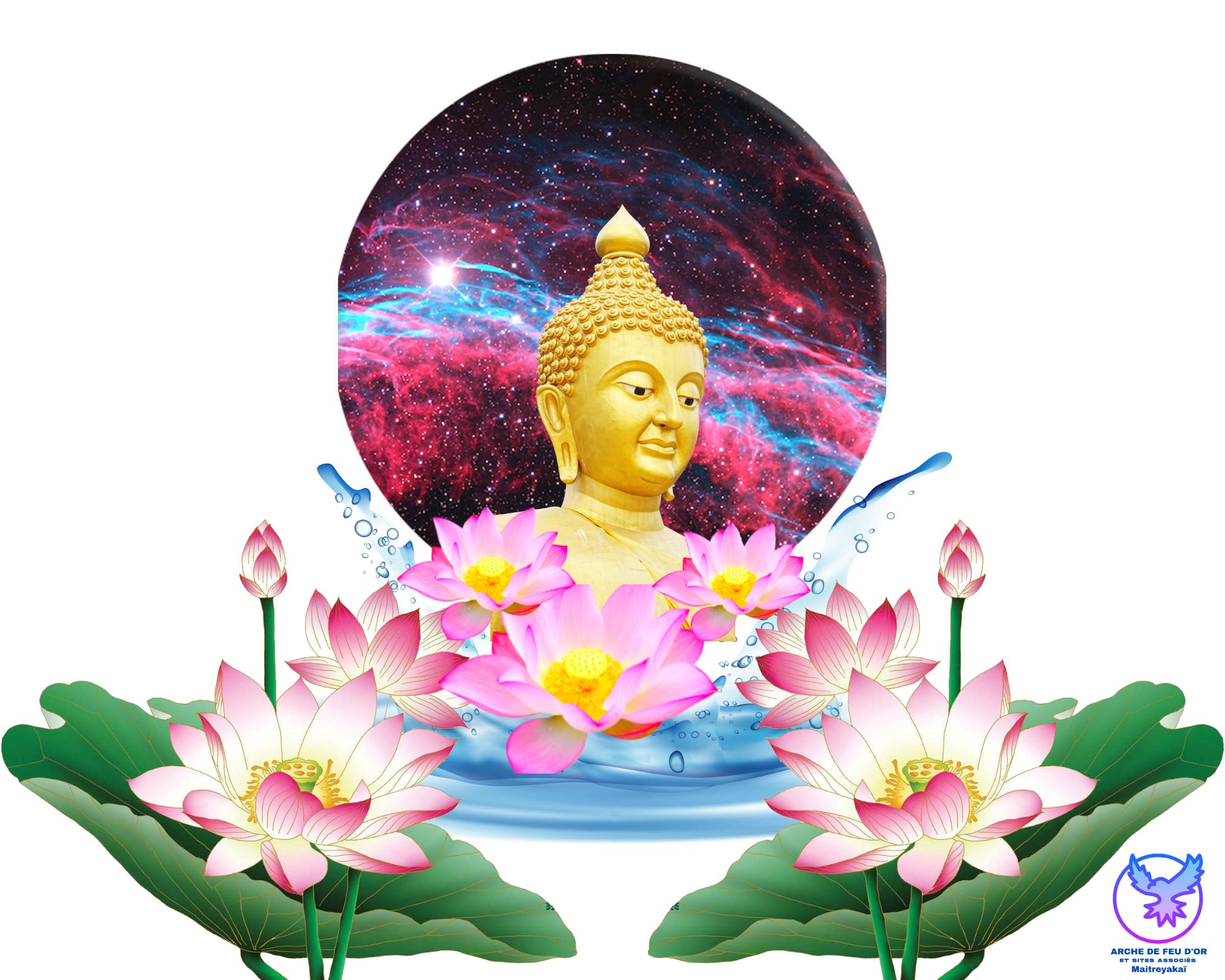 Slide Arche d'Or Maitreyakaï 13