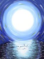 Lumière des Dauphins