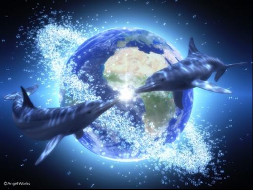 Terre dauphins