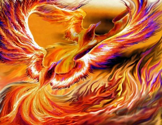 Phenix of fire by stolvezen d1ew76z fullview 1