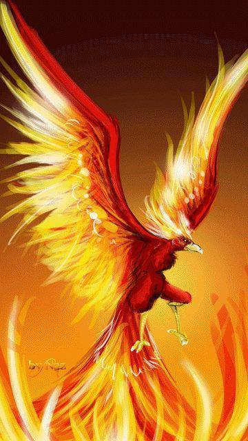 Phoenixdefeulumie re